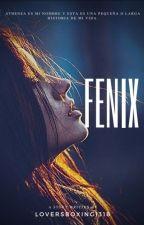 FENIX by Loversboxing