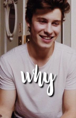 why » shawn mendes  by everydayhoney