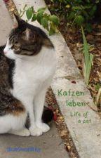 Life of a cat / Katzenleben by blueSwordlily