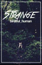 * Strange * A Warrior Short Story *  by Birdiful_Human