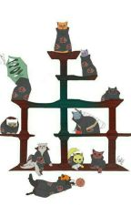 Akatsuki Back To Life As A Cat! by KarushiUchiha