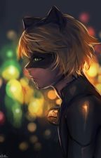 If Love Is Pain Then Let's Hurt Tonight (Chat Noir X Reader) by Crystal-Skylar