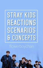 Stray Kids Reactions ✓ by lustsehyoon