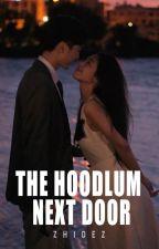 The Hoodlum Next Door by zhidez