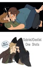 Sabriel One Shots by sbarcohana