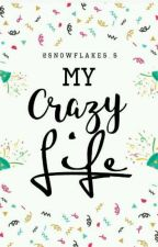 My Crazy Life by snowflakes_s