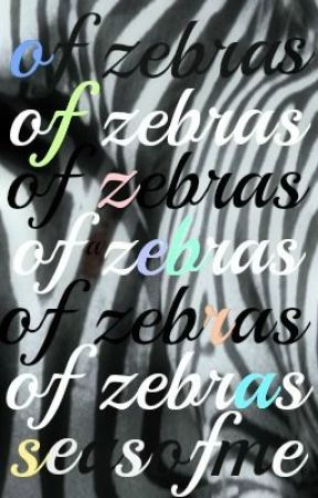 of zebras by seasofme