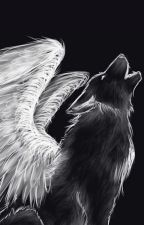 Half Archangel Half God [Sirius Black] by DecemberNightshade