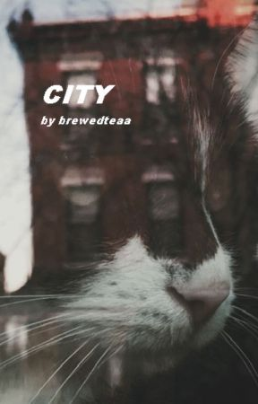 City - Warrior Cats by Brewedteaa