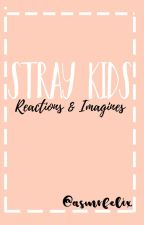 StrayKids||Reactions&Imagines by galixiey
