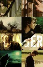 Dangerous (FF-Harry Potter/ z doby Pobertů) by AdllBlkov