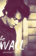 The Wall- Harry Styles. by akinoreV0707