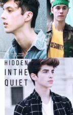 HIDDEN IN THE QUIET by troylieber