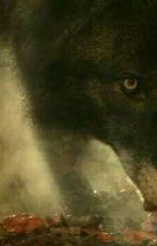 What Happened In Hemlock by AuraRiver