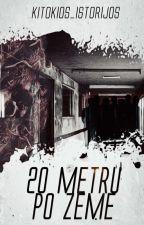 20 METRŲ PO ŽEME by Kitokios_Istorijos