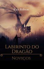 Labirinto do Dragão - Noviços by KaioRobson