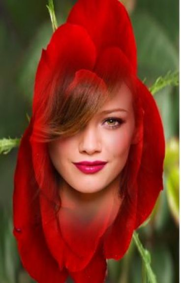 Bella Rose [Pirates Of The Caribbean Fanfic]