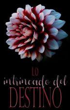 Lo Intrincado del Destino [Saga Tough 2.5]  by LeslieMorgenstern