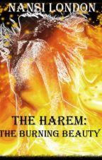The Harem- The Burning Beauty by NansiLondon