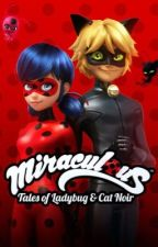 Ladybug And chat noir Find out who eachother are  by okxy_arixna