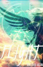 Flight by MeganM3