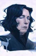 Magic Is Beautiful snape x reader/oc by QueenBuzzer
