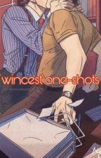 Wincest Oneshots by iamlowkeyjesus