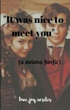 It was nice to meet you - ( a delena fanfic ) by love_joy_writer