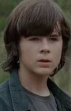 ~Together~ (Carl Grimes x Reader) *UNDER EDIT* by Jazz-demo
