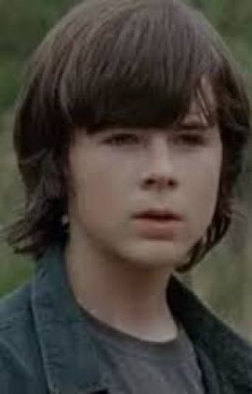 ~Together~ (Carl Grimes x Reader) *UNDER EDIT*
