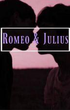 Romeo & Julius | ZIAM Instagram Story.. by LilyBlacksmith