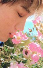 Lonely Flower |SeKai| by sekaimaniac