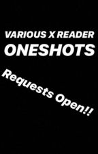 Various x Reader Oneshots by garmaufan4