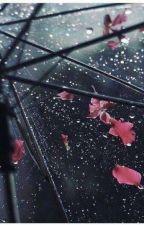 Rain by ShaimaShimmerz