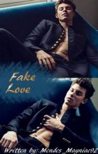Fake Love (Shawn Mendes CZ) by Mendes_Mayniac92