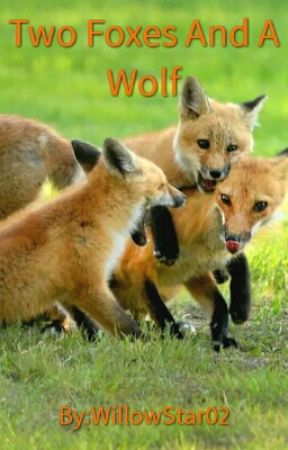Two Foxes And A Wolf - The Wolves Kill - Wattpad