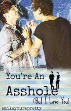 You're An Asshole (But I love you) [Español] by Nixllsmilex