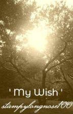' My Wish ' by stampylongnose100
