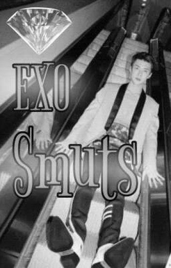 EXO SMUTS girl pov (Request Open)