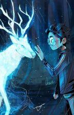 ||Preferiresti:HARRY POTTER||by blue_crystal by blue_crystal0