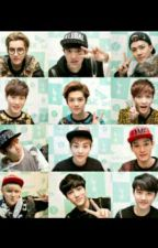 My Brother EXO (OT12) by zulfayupi