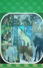 Călătoria unui lup singuratic by Kamy2405