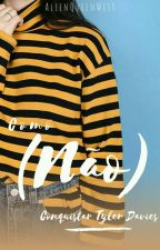 Como (não) conquistar Tyler Davies by AllenQueenWest