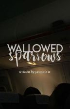 wallowed sparrows by burgerdy