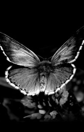 The Ululating Butterfly by RoryMcClellan