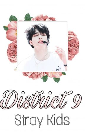 District 9 ✿ฺ Stray Kids  by stray_blossom