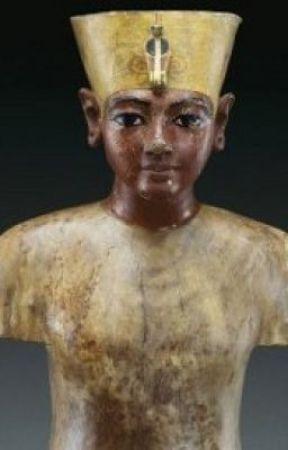 The African Origin of Ancient Egyptian Civilization by BrandonPilcher
