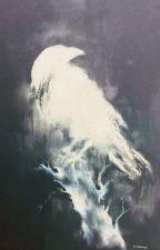 Corvos by Darkneey