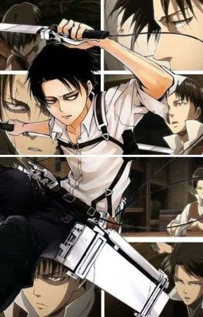 Levi Ackerman X Reader - Mini Levi X Reader (Sad) - Wattpad
