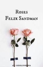 roses ➳ felix sandman by cuddlyfoooer
